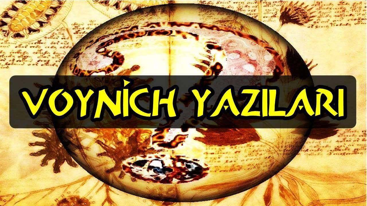 voynich yazilari