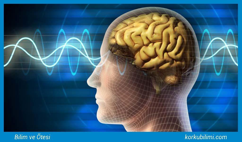 beyin-kontrolu-korku-bilimi